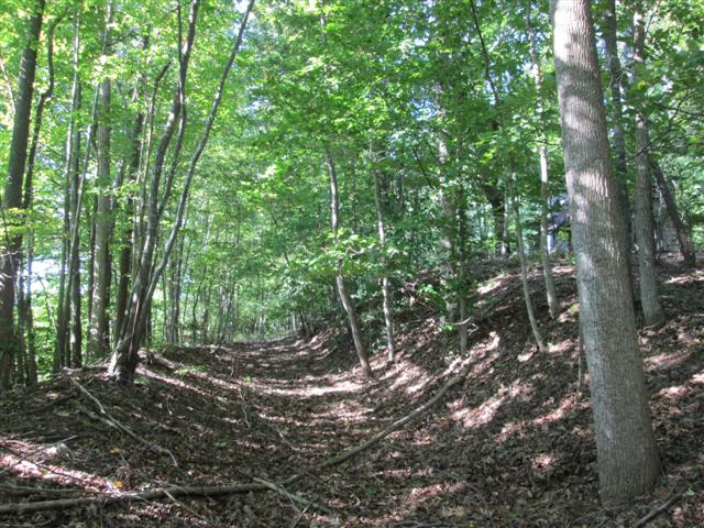Woodland Trails for hikers